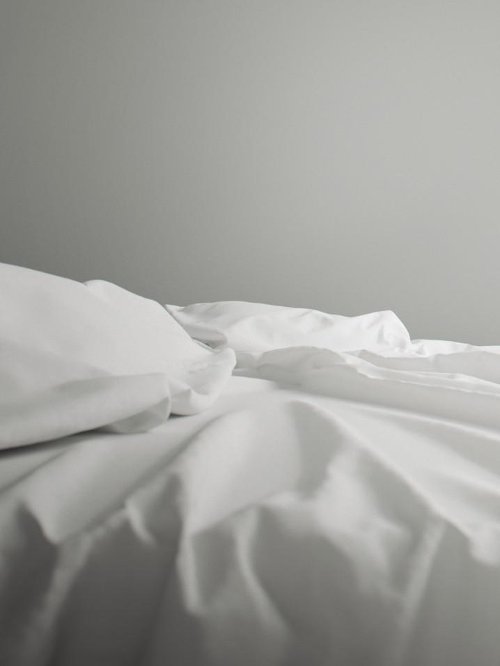 corona_renderer_xoio_sheets