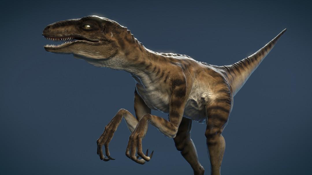 Velociraptor_CG_Dinosaur_by_xoio